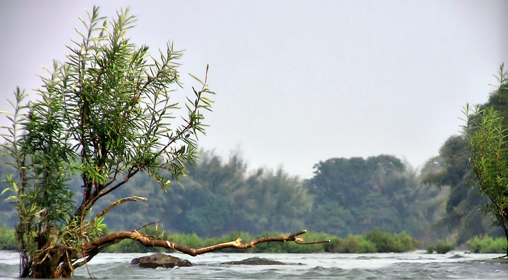 Le Tonle Srepok, fleuve pittoresque et élégant