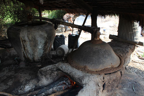 Cambodge & Tourisme gourmand : Distillerie traditionnelle d'alcool de riz