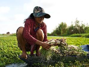 Économie : L'extraction de sable du Cambodge met-elle en danger le Mékonget les communautés ?