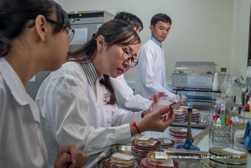 Institut Pasteur du Cambodge : La politique de qualité reconnue et officialisée