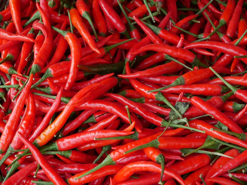 Forte hausse des exportations de piment frais