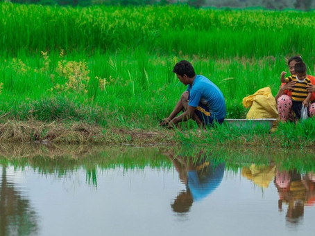 Cambodge & Environnement : Moment critique, décisif et opportun pour l'action climatique