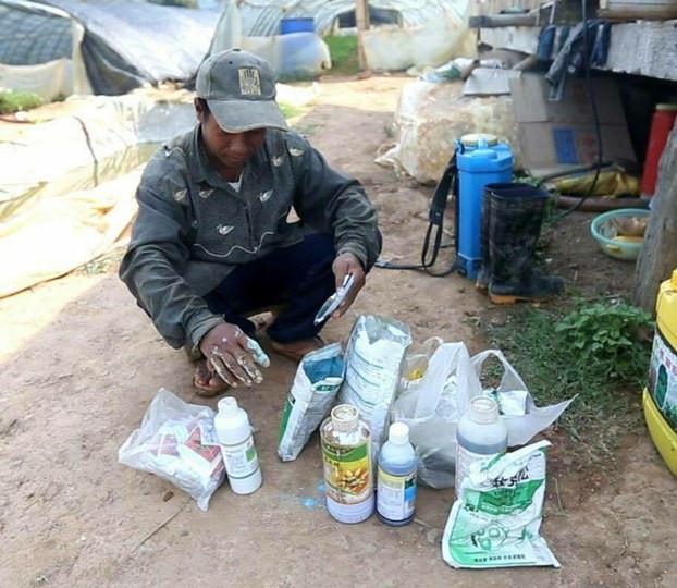 Interdiction temporaire d'importation d'herbicides