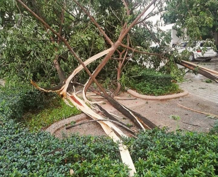 Coup de vent à Phnom Penh