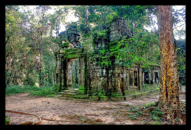 Siem Reap - Cambodge - Temple du Ta Prohm (CC)
