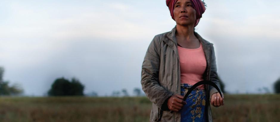 Histoire : Noces Rouges ou les mariages forcés sous le régime de Pol Pot