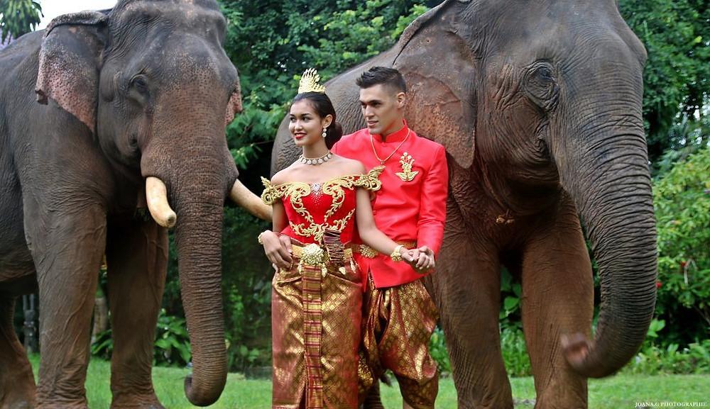 Art, tradition et éléphants