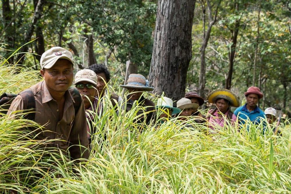 Les membres de la communauté à Phnom Dek Chambok Hos patrouillent dans leur forêt communautaire près du sanctuaire de Prey Lang. La communauté a créé une entreprise d'écotourisme pour promouvoir la conservation des forêts. © RECOFTC, 2018.