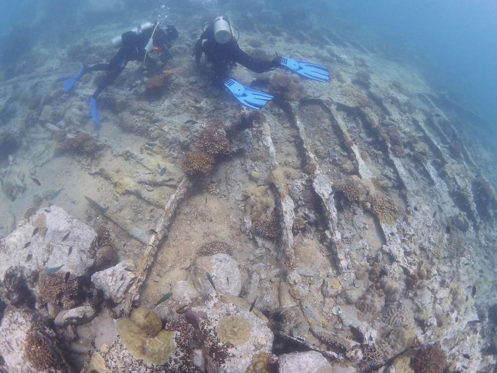 Découverte d'une épave sur l'île requin
