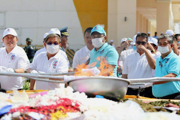 destruction de plus de 60 kilos de drogue et d'environ trois tonnes de feuilles de khat