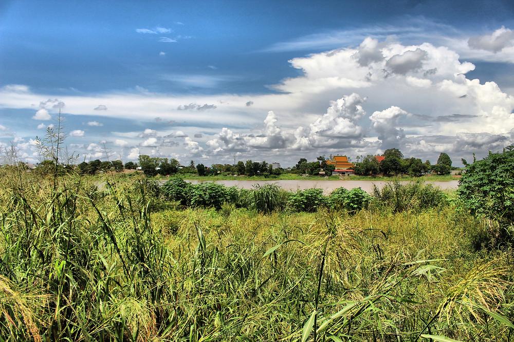 Berges du Tonle Bassac