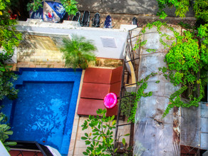 Cambodge & Opinion : Tourisme et hôtellerie, «Il est temps de s'adapter et d'aller de l'avant»…