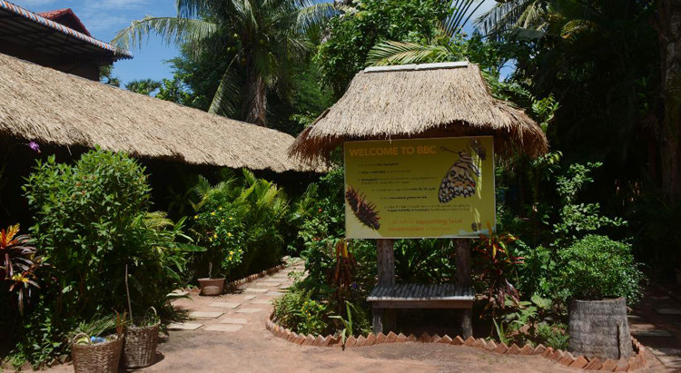 Tourisme & Balade : Butterfly Center, lieu original pour les touristes à Siem Reap