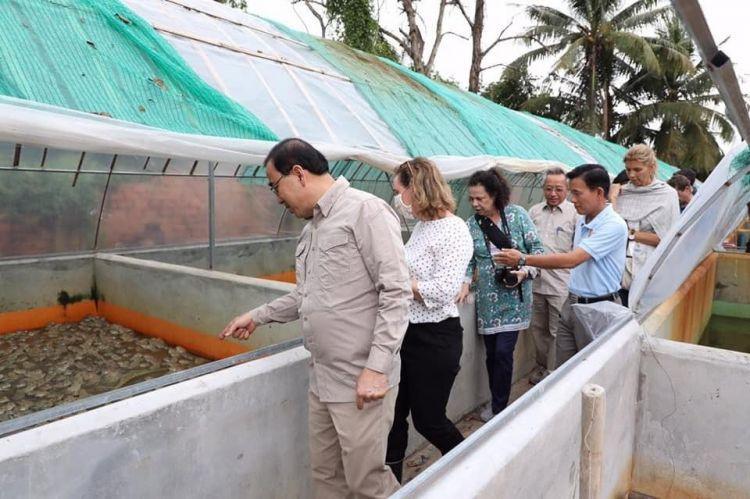 la ferme de grenouilles dans la commune de Kantraing