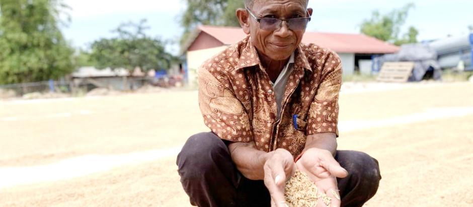 Prey Veng & Coopération : Des investissements BAD efficaces pour lutter contre la sécheresse