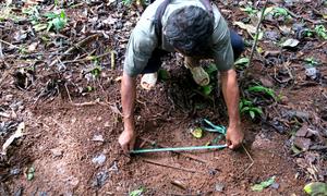 Gardien communautaire mesurant l'empreinte d'un éléphant dans la vallée de l'Areng (Cardamomes). Crédit : Pablo Sinovas/FFI