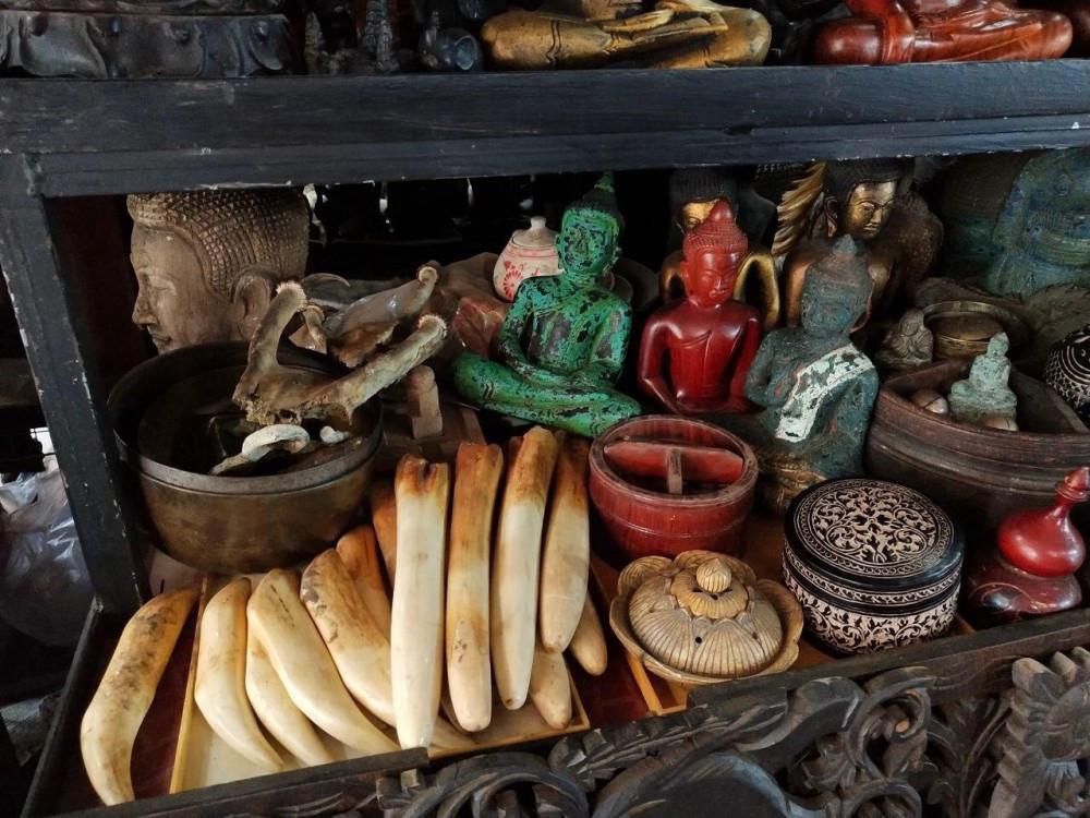 Boutique de souvenirs en ivoire