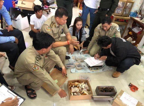 Chbar Ampov : Raid chez la vendeuse d'ivoire et d'os de tigre