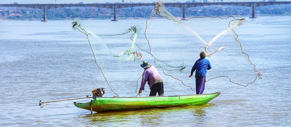 Mékong : Quand le fleuve nourricier manque d'eau