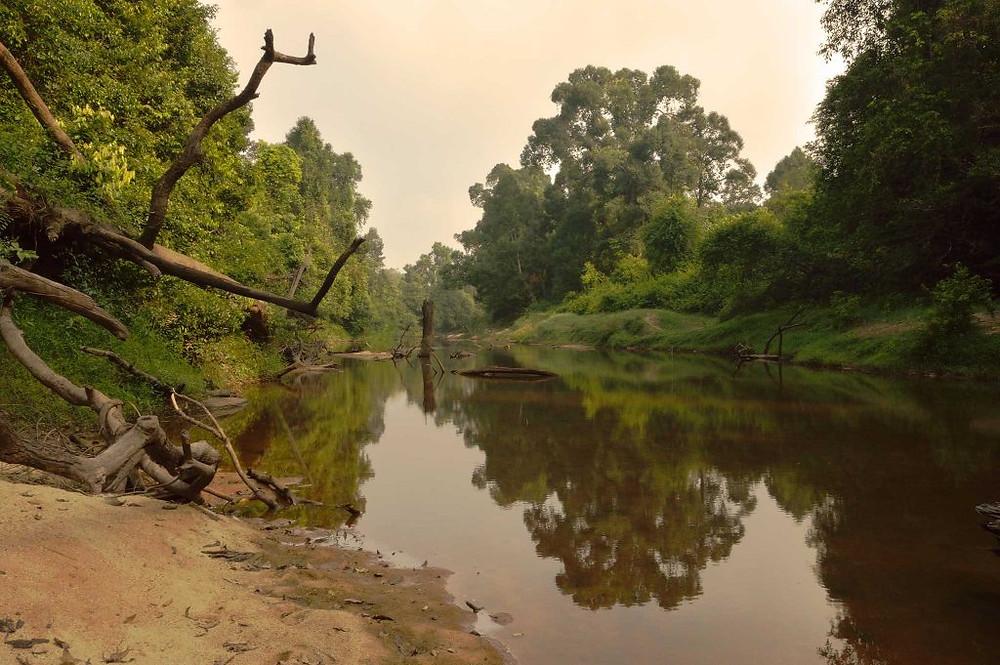 Areng River dans les Cardamomes