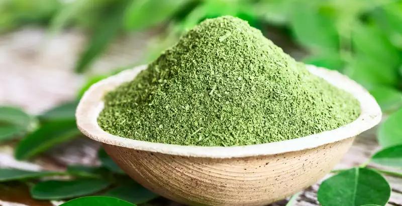 Produit du Cambodge : Le Moringa, un végétal aux multiples vertus