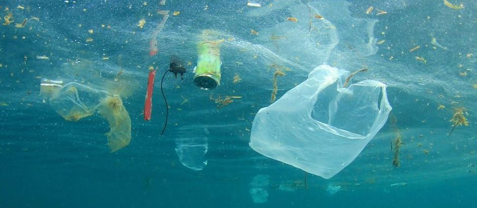 Environnement : Cambodge et Japon en guerre contre les déchets plastiques marins