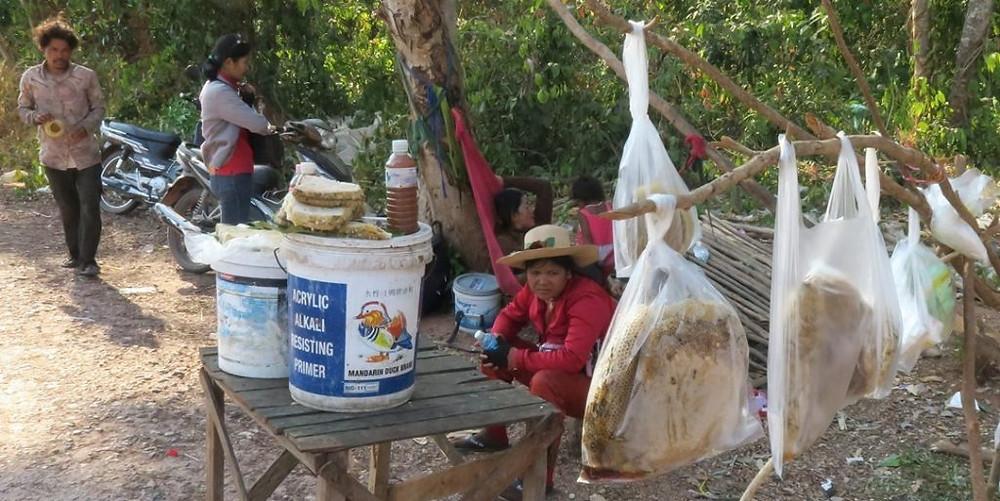 ChasseurChasseurs de miel au Nord de Siem Reap (photo Eric Guerin)s de miel au Nord de Siem Reap (photo Eric Guerin)