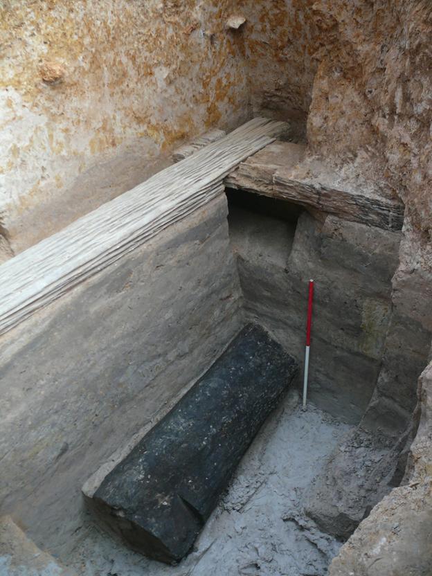 Le tronc du Thlok, tel qu'il a été découvert