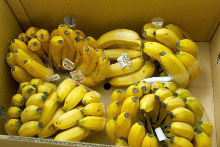 Première exportation de bananes Cavendish vers la Chine