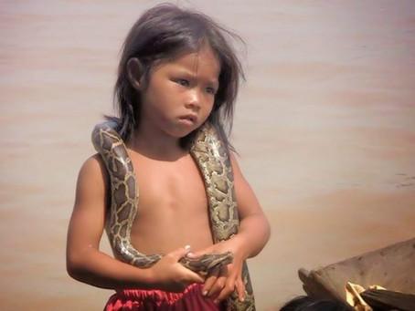 Photo du jour, jeune Khmère de Siem Reap et python