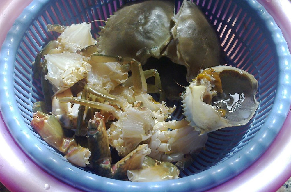 Crabes de palétuviers prêts à cuire