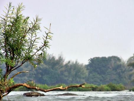 Cambodge & Santé : Mesures de sécurité à rappeler pour le tourisme d'aventure