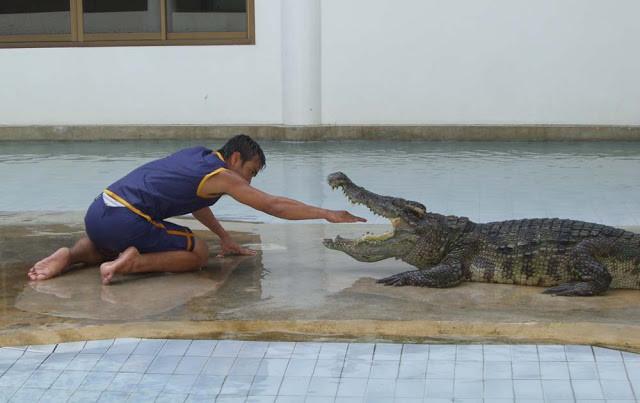 Attraction au Safari World de Phnom Penh.