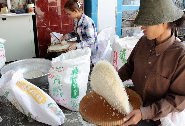 +31 % d'export de riz décortiqué en 2020