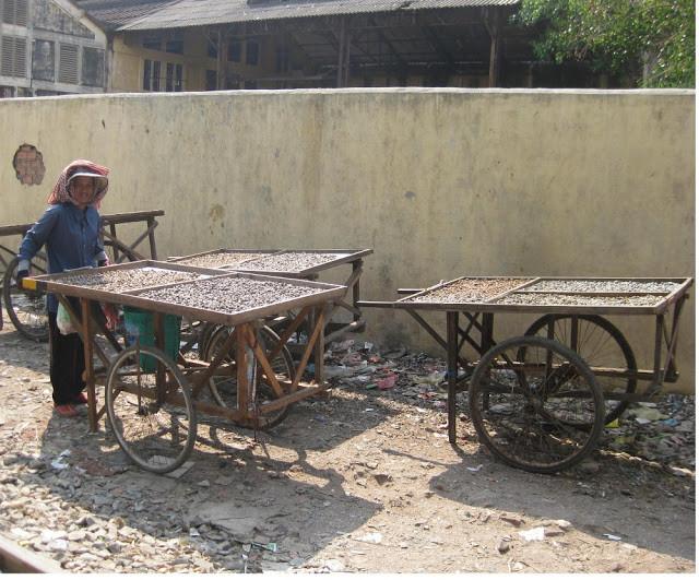 Vendeuse de Palourdes d'eau douce. Photographie par Huy Pun