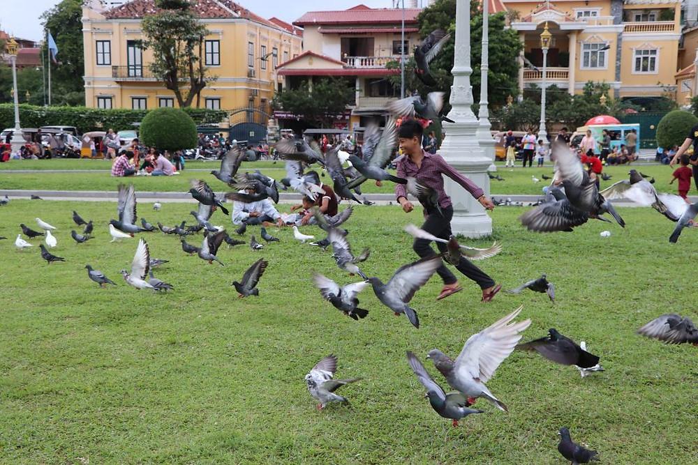 Enfant s'amusant à faire fuir les pigeons, parc du Palais royal