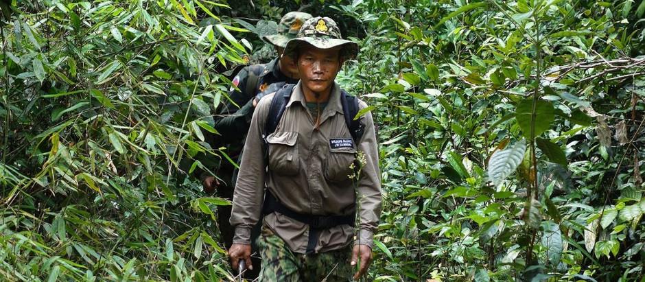 Découverte & Trekking : Tourisme responsable et durable dans les Cardamomes