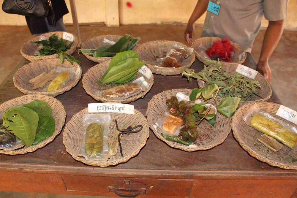 Végétaux utilisés pour la teinture
