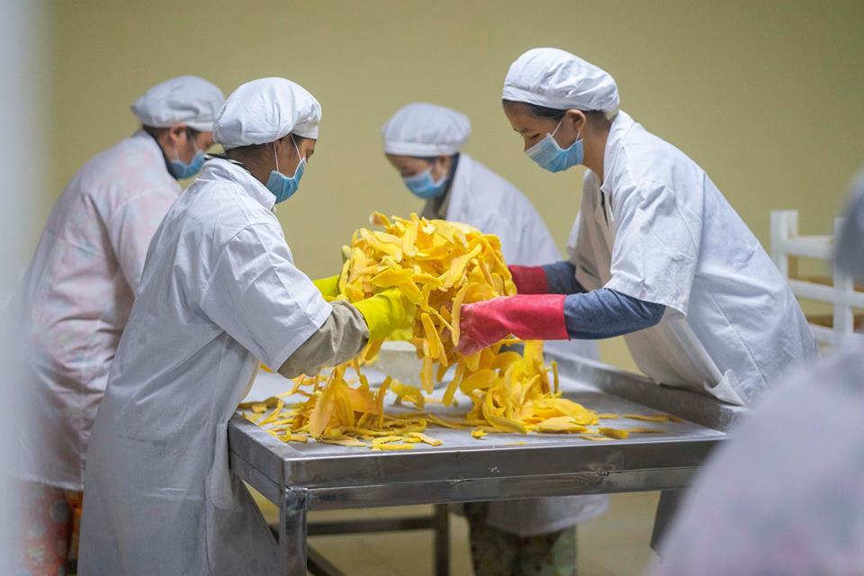 LBN Agriculture projette d'investir 11,9 millions de dollars dans la transformation de fruits