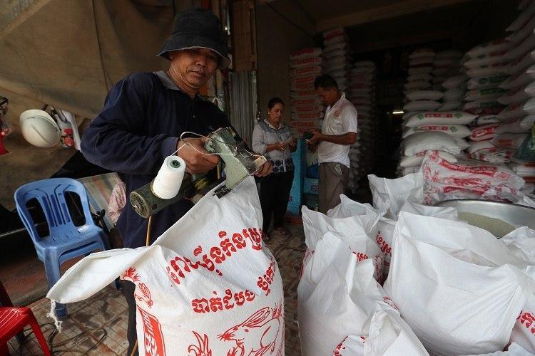 Le riz décortiqué du Cambodge a été exporté vers 59 pays dans le monde