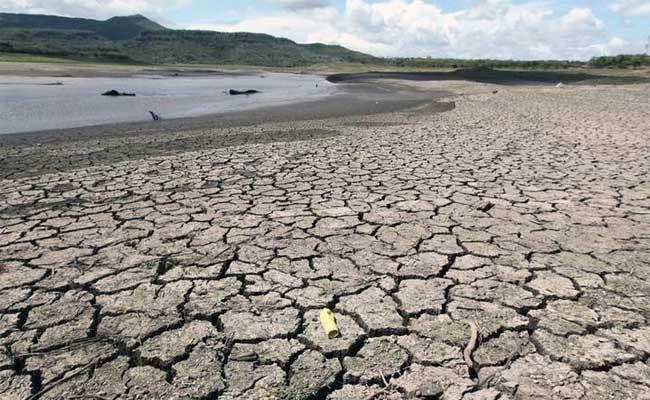 El Niño : L'été sera très chaud et sans pluies