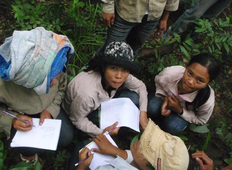 Environnement & USAID : Changer de comportement pour protéger les forêts de Prey Lang