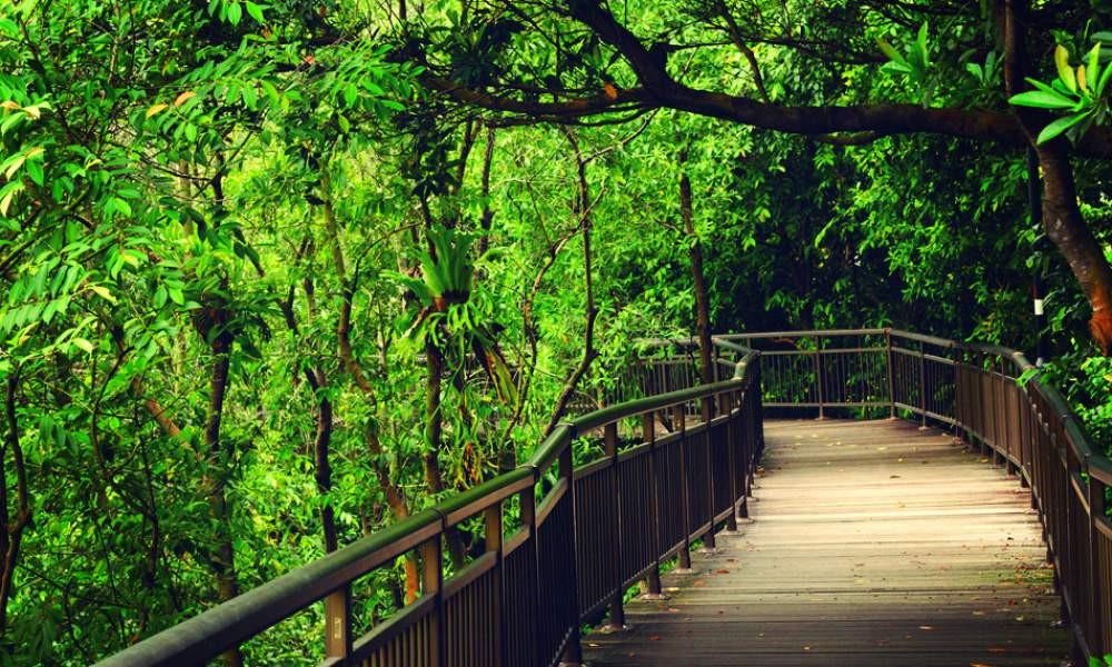 parcs nationaux de Singapour