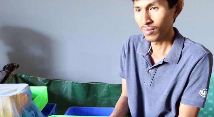 Cambodge & Initiative : Les mouches soldats noires de Sao Sensamnang