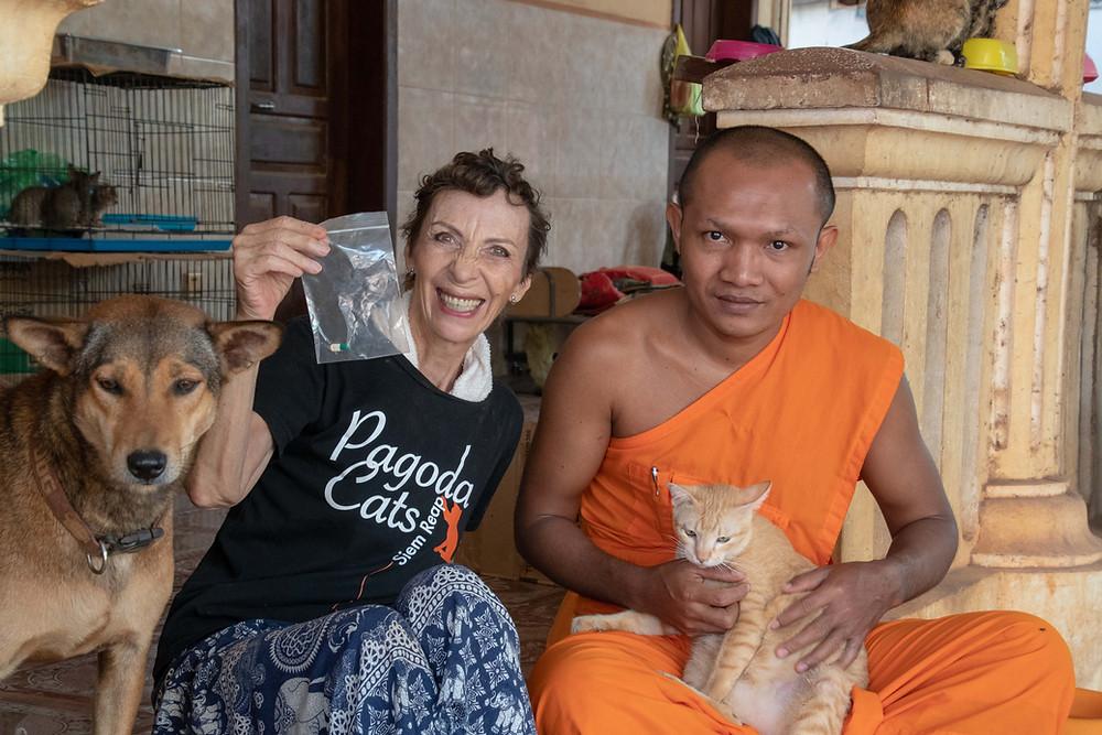 Longtemps introuvables à Siem Reap, les antibiotiques vétérinaires ont permis de sauver la vie de plusieurs animaux