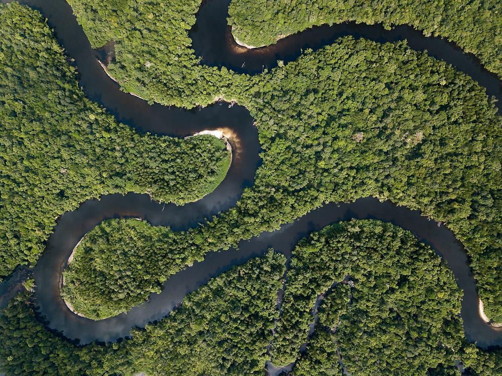 Le parc national des Cardamomes