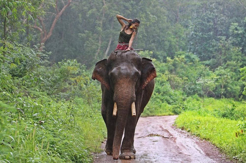 Marianne Clais à dos d'éléphant