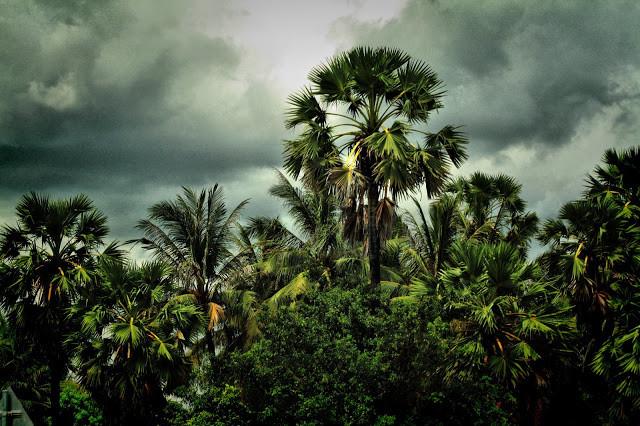 Photo KiamProd. Christophe Gargiulo