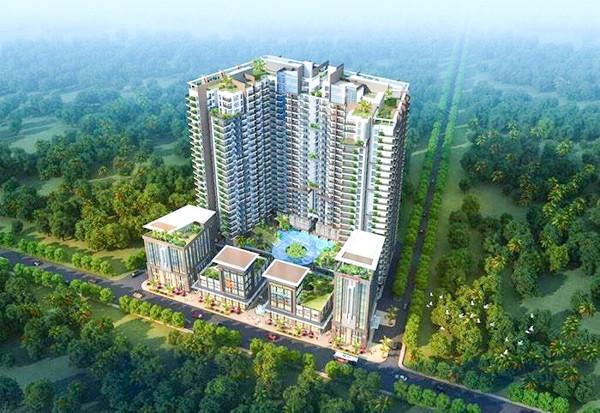 Le projet immobilier D'Seaview