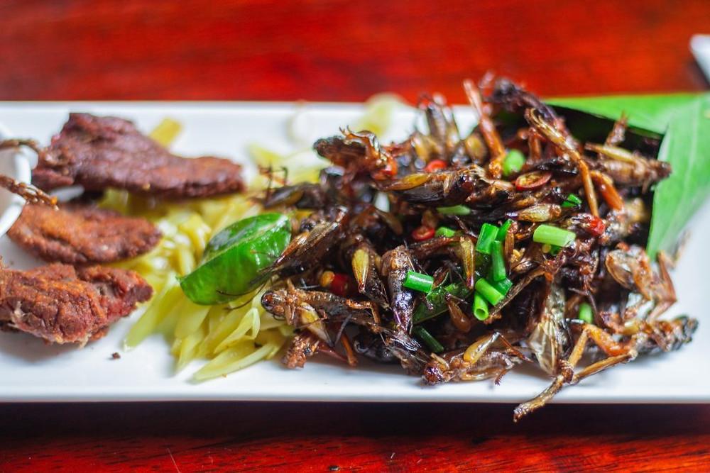 Le plat de sauterelle frit au restaurant Romdeng